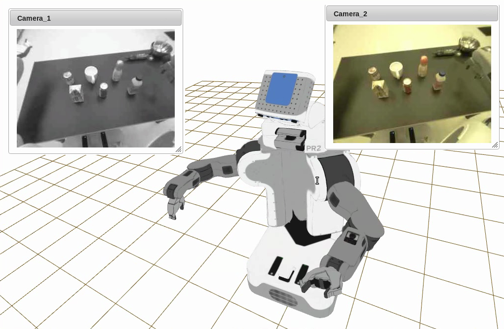 Cameras and Robot Model in Wviz